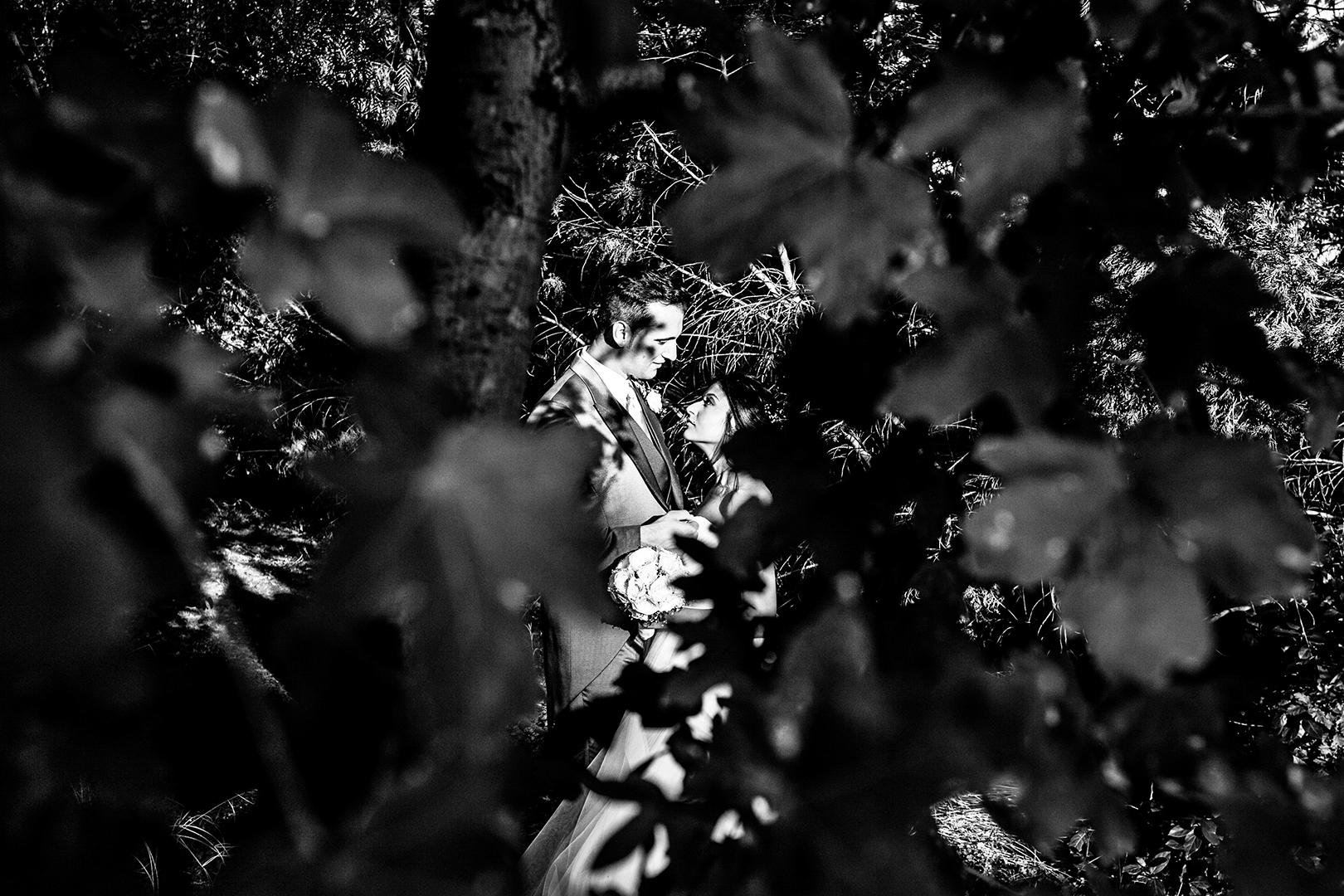 70 gianni-lepore-sposi-tra-foglie